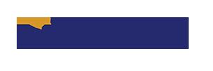 Top Echelon Logo